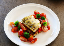 Fillet of zander. Grilled fillet of zander with tomatoes and red onion salad royalty free stock photos