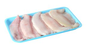 Filleted catfish. On tray isolated on white Stock Images