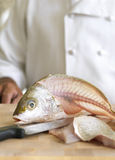 Filleting Fish Royalty Free Stock Image