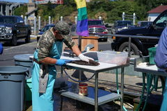 Filleting a fish. Sport fishing is big business all around the world. Most fisherman pay workers at the docks to clean and fillet their fish before taking them Stock Photography