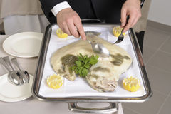 Filleting a poached turbot Royalty Free Stock Images