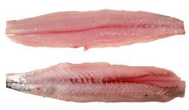 fillets isolated mackerel Στοκ εικόνα με δικαίωμα ελεύθερης χρήσης
