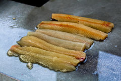 Fillets of northern pike prior to having y-bones removed stock photos