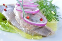 Fillets of white herring Royalty Free Stock Photo