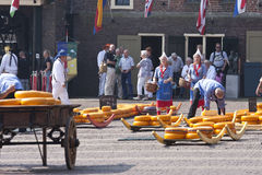 Filling barrows at cheese market, Alkmaar, Holland stock image