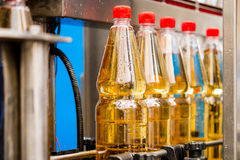 Filling bottles with juice Stock Images