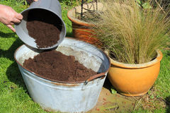 Filling a container with compost. stock photo