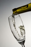Filling glass with white wine. White wine pouring into a wineglass Stock Photography