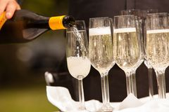 Filling the glasses Stock Photography