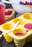 Filling ice cream moulds with homemade juice Royalty Free Stock Photos