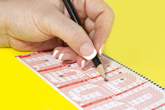 Filling Lottery Ticket. Female hands filling lottery ticket. Close up Stock Photos