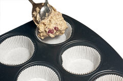 Filling a muffin tray Stock Image