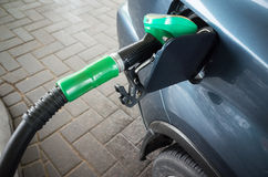 Filling with petrol. Automatic gas station Royalty Free Stock Image