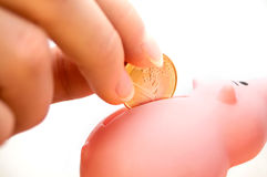 Filling a Piggybank Stock Images