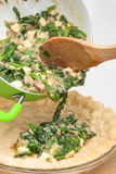 Filling the spinach and tuna quiche lorraine royalty free stock image