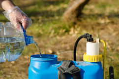 Filling a sprayer Stock Photography