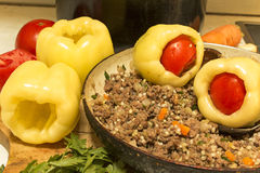 Filling stuffed peppers. Stock Photo