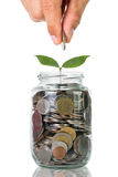 Filling up coins to glass for investment Stock Images