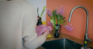 Filling Up Hyacinth Vases with Water stock video