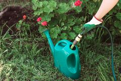 Filling up watering can Stock Photos