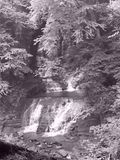 Fillmore Glen State Park Waterfall Black et blanc photographie stock