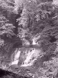 Fillmore Glen State Park Waterfall Black und Wei? stockfotografie
