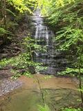 Fillmore Glen State Park Waterfall royaltyfria foton