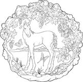 Filly in a garden with butterflies. Coloring page Royalty Free Stock Photo