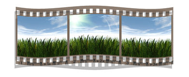 Film with 3 images of green grass and blue sky. Film stripe with 3 images of green grass and blue sky Stock Photography