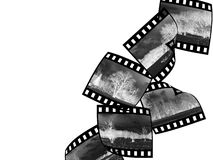 Film_3 Arkivfoton