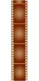 Film antique de photo de Brown Images libres de droits