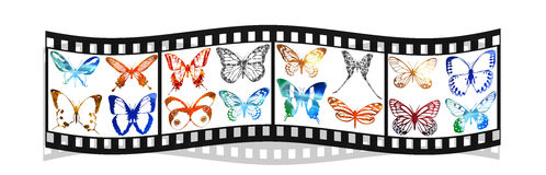 Film with bright metal butterfly isolated on white. Background Royalty Free Stock Photography