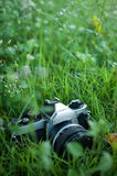 Film camera Royalty Free Stock Image