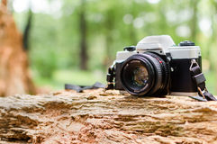 Film camera in natural outdoor. Vintage look Stock Photo