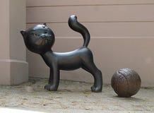 Film cat Boniface. Royalty Free Stock Images
