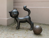 Film cat Boniface. Royalty Free Stock Photos