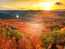 Film effect. Fresh vivid colors of autumnal forest.  View over birch and pine forest to  deep valley. Autumn landscape Stock Photo