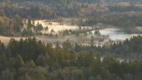Film för Tid schackningsperiod av flyttningdimma längs den krokiga Sandy River One Early Winter morgonen i Oregon 10080p stock video