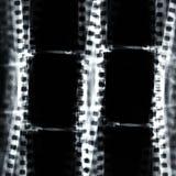 Film frame Stock Photo