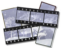 Film with snow-covered trees. Stock Photography