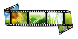 Film strip with images. Isolated on white Royalty Free Stock Image