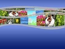 Film strip. Strip 3 photo film on a blue background Royalty Free Stock Photo