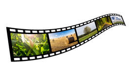 Film strip with summer images. (isolated Royalty Free Stock Image
