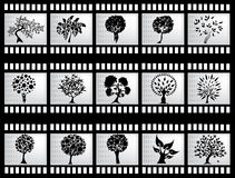 Film strip with trees Stock Images