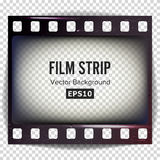 Film Strip Vector. Frame Strip Blank Scratched Isolated On Transparent Background. Film Strip Vector. Frame Strip Scratched Isolated On Transparent Background Royalty Free Stock Photo