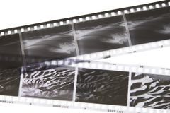 Film strips. Black and white negative film strips of desert scenes Royalty Free Stock Photos