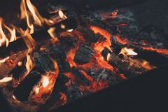 Film style photo creative: warm fireplace with lots of trees ready for barbecue on the nature. Stock Photo
