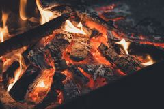 Film style photo creative: warm fireplace with lots of trees ready for barbecue on the nature. Royalty Free Stock Photo