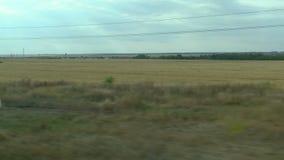 Filmande från fönstret av ett rörande drev Ryskt höstlandskap: fält skogar som planterar, himmel arkivfilmer