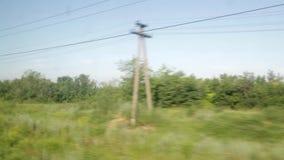 Filmande från fönstret av ett rörande drev Solig dag för sommar, skog, kraftledningar arkivfilmer